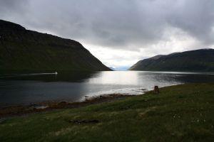 The boat drops us off at Veiðileysufjörður