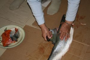 Arctic char preparation