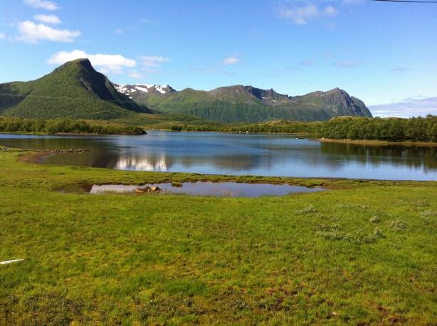 Austvågøya