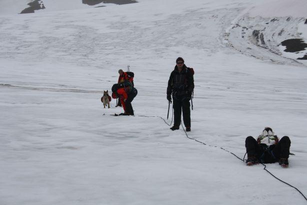 Tethered together on the glacier