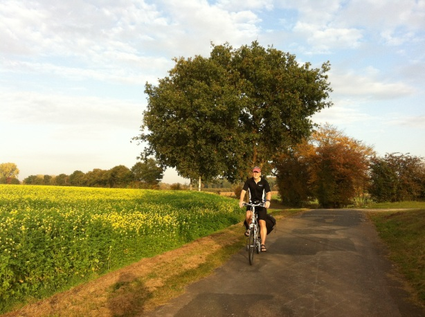 Cycling in the soft evening ilght