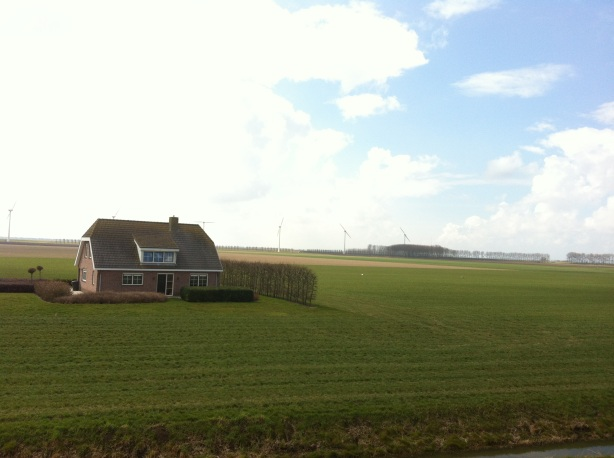 Dutch polder and house