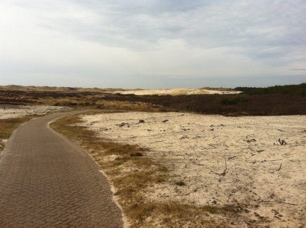 Cycling through the dunes