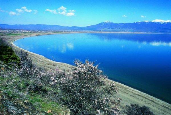 Lake Ohrid, Macedonia. http://myweb.unomaha.edu