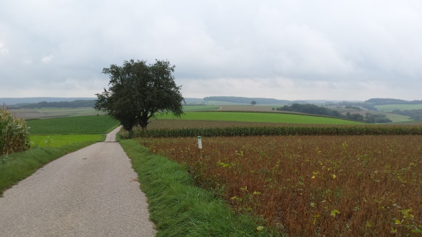 Rolling fields on the way to Heilbronn