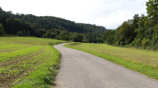 Path along the Neckar