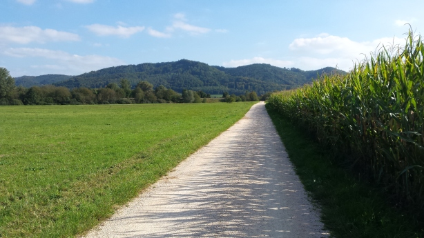 A rolling field