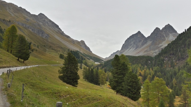 Looking up at the Albula Pass