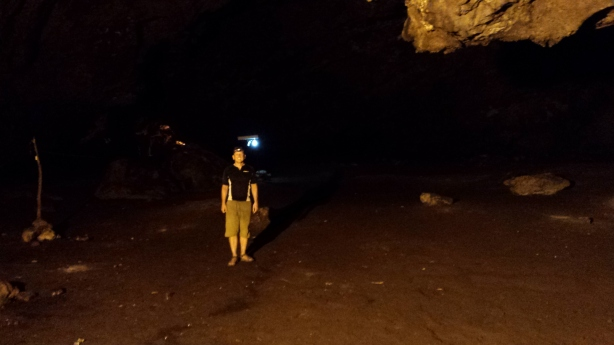 Visiting the bats