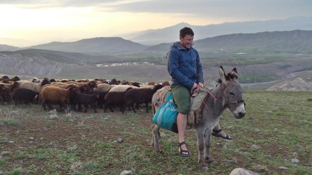 Riding the donkey