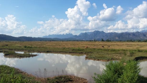 The beautiful plains