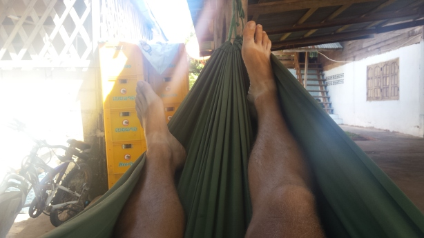 In the hammock