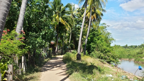 Little path on Don Khon
