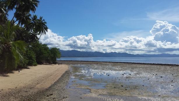 Sulawesi beach