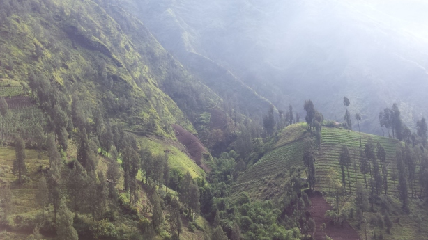 Descent from Bromo