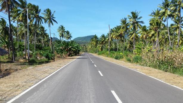 The road to Larantuka