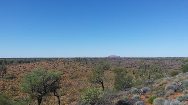 Uluru from a distance