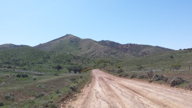 Road to Blinman