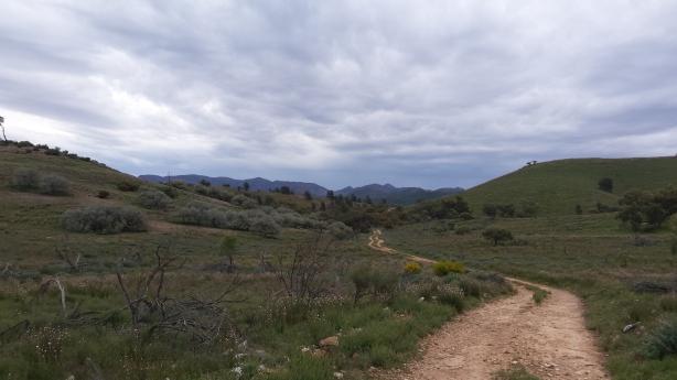Mawson Trail