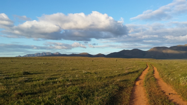 Mawson Trail in the evening light