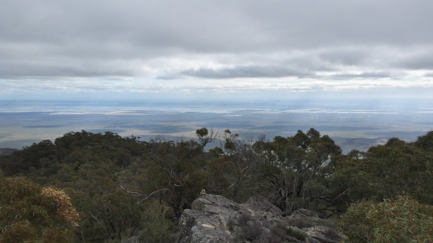 View from Mt Brown