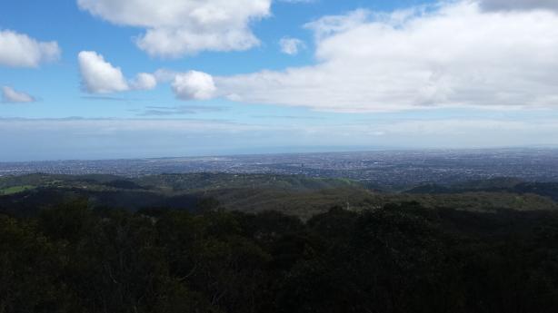 Mt Lofty