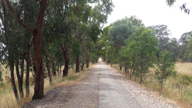 The flatter bike path