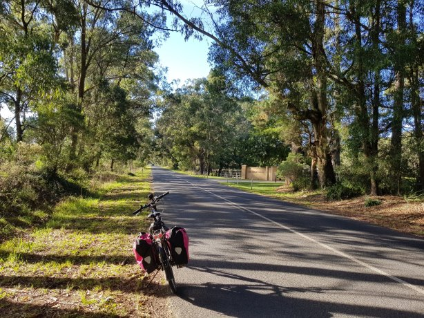 On the way to Fitzroy Falls