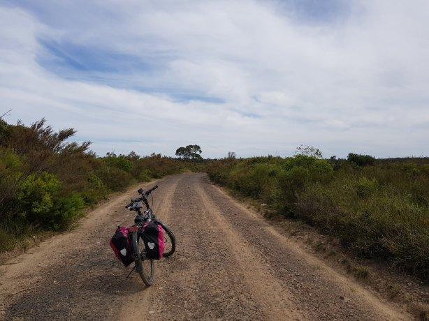 On the way to Gerrigong Falls