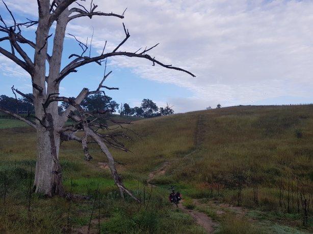 The Six Foot Trail